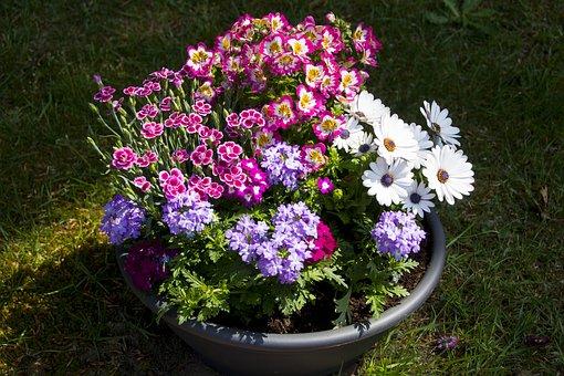 kompozycje kwiatowe warszawa
